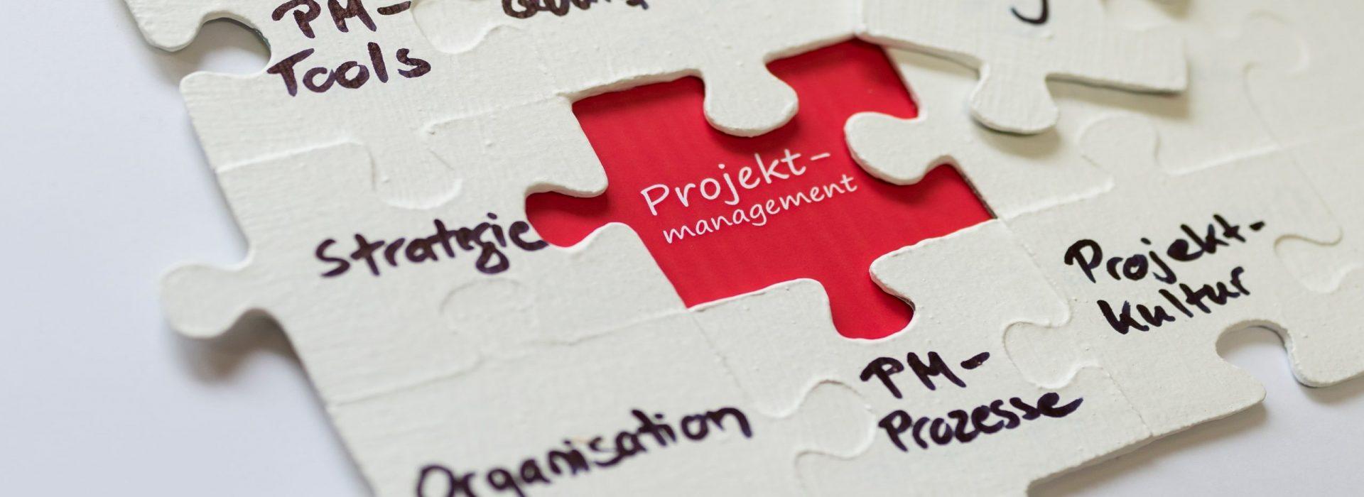 Projektmanagement-Handbuch